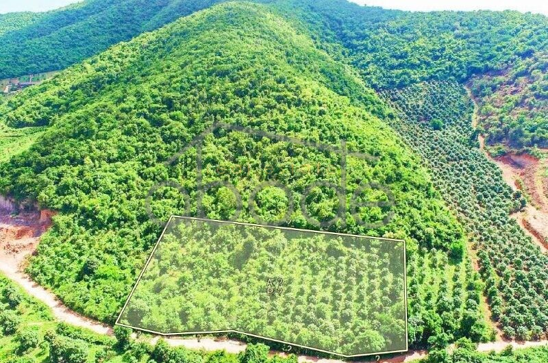 Kep mountain land for sale Kep Province